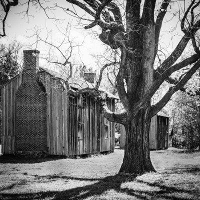Stagville: Black & White